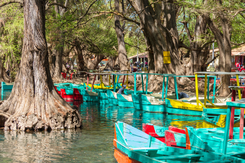 lanchas flotando sobre el lago de camecuaro