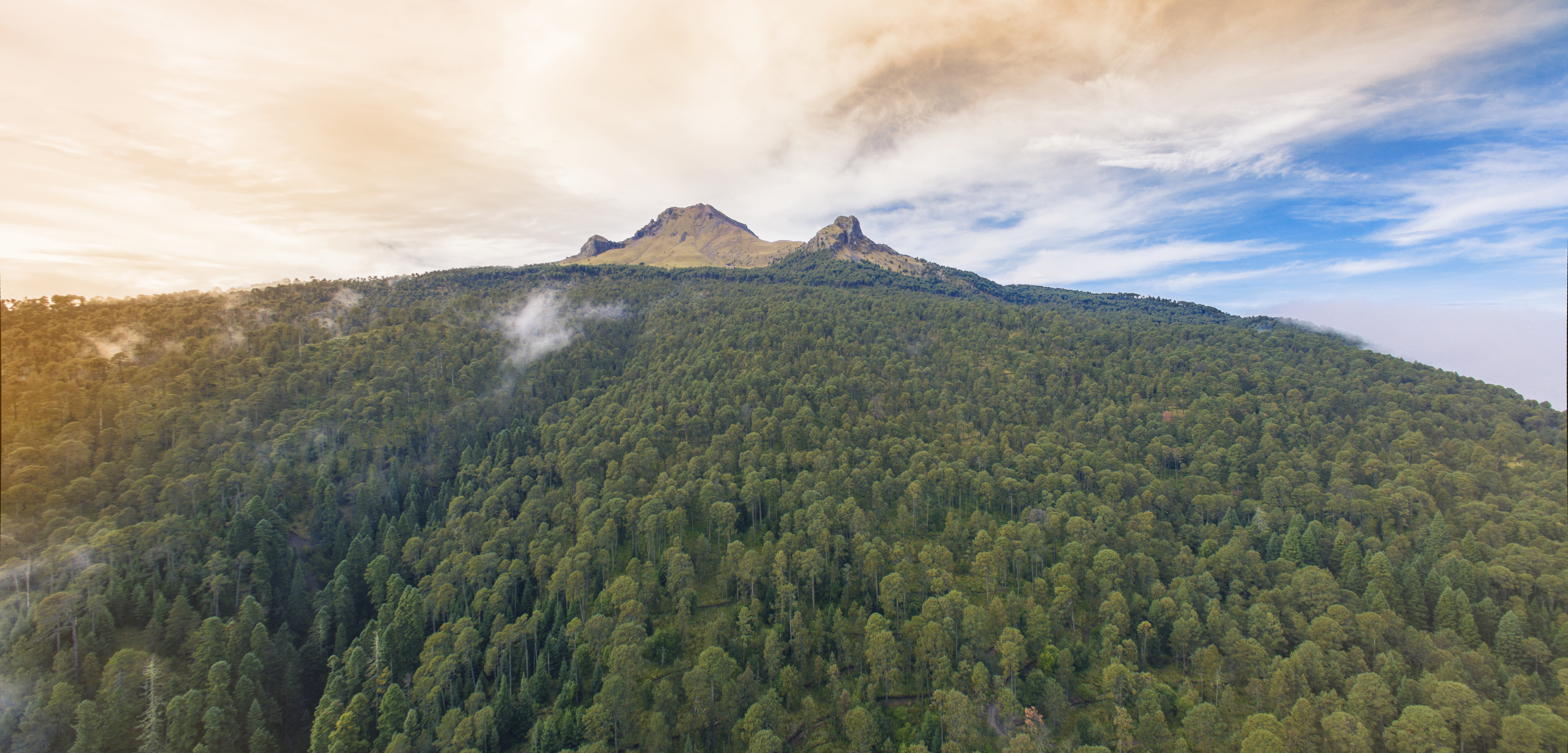 Adéntrate En La Naturaleza De La Malinche Rincones De México